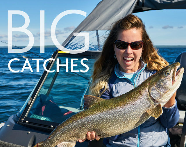 BIG Catches 640 x 647