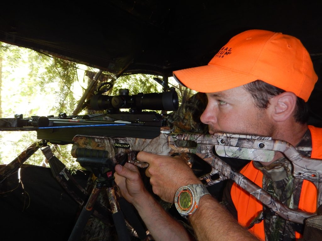 Bear Hunting with Saul Outfitters