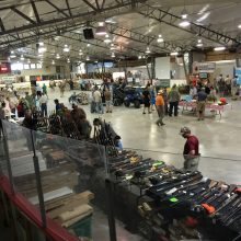 manitoulin deer show