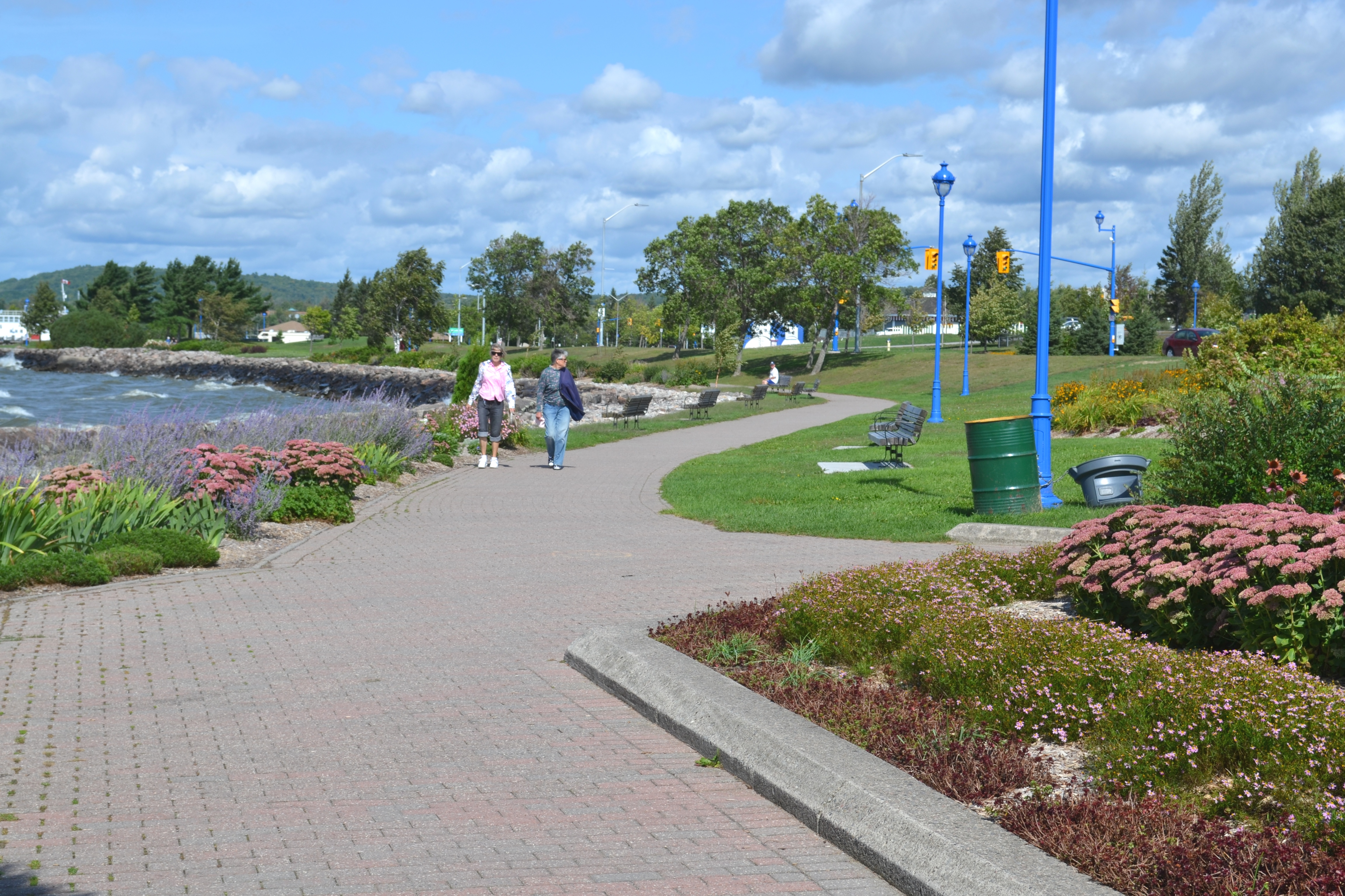 Car parking, pedestrian sidewalks and gardens run parallel to Kate Pace Way