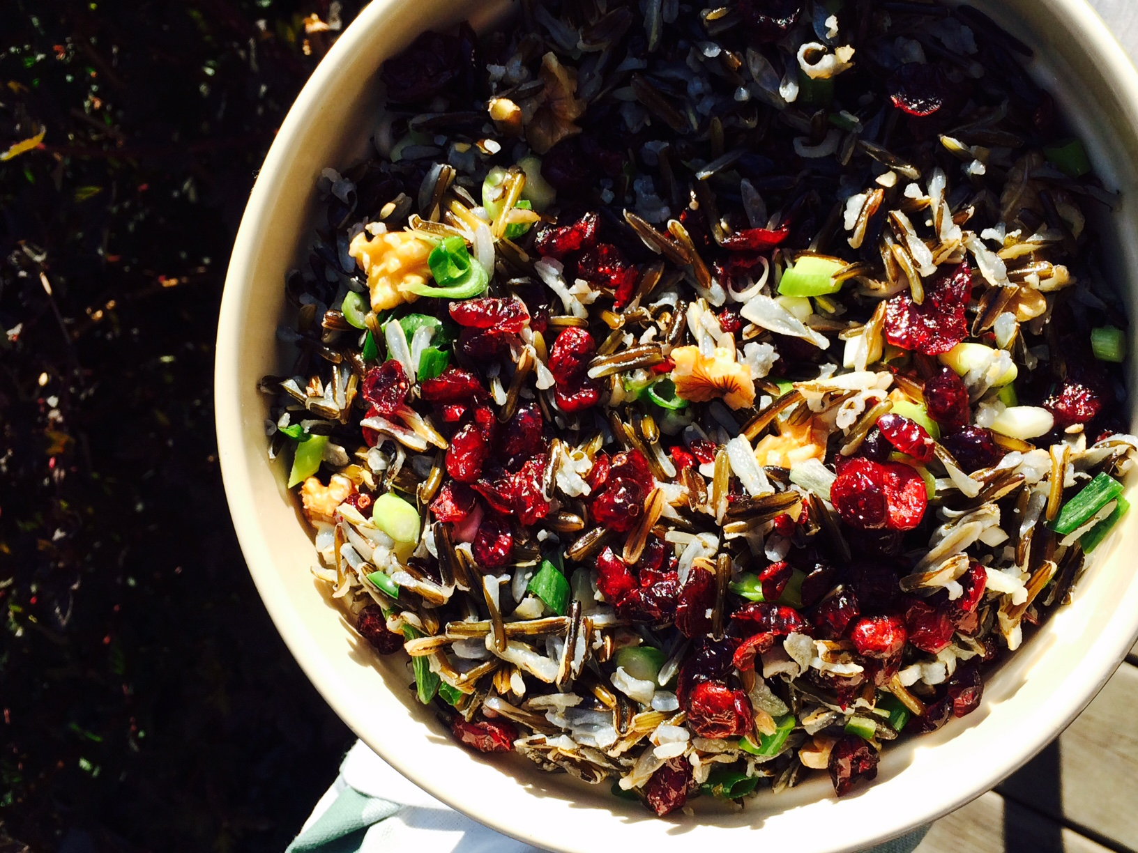 Forage for Wild Edibles in Northeastern Ontario