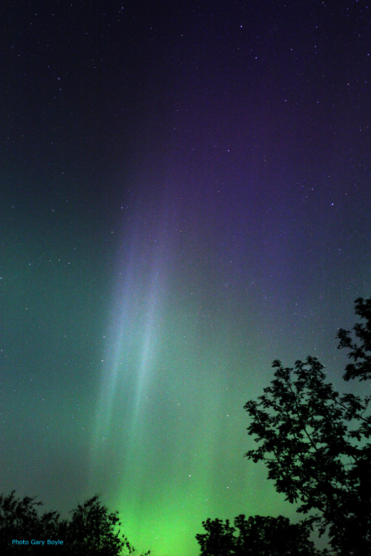 Looking Up: 4 Night Sky Features to Watch For This Summer